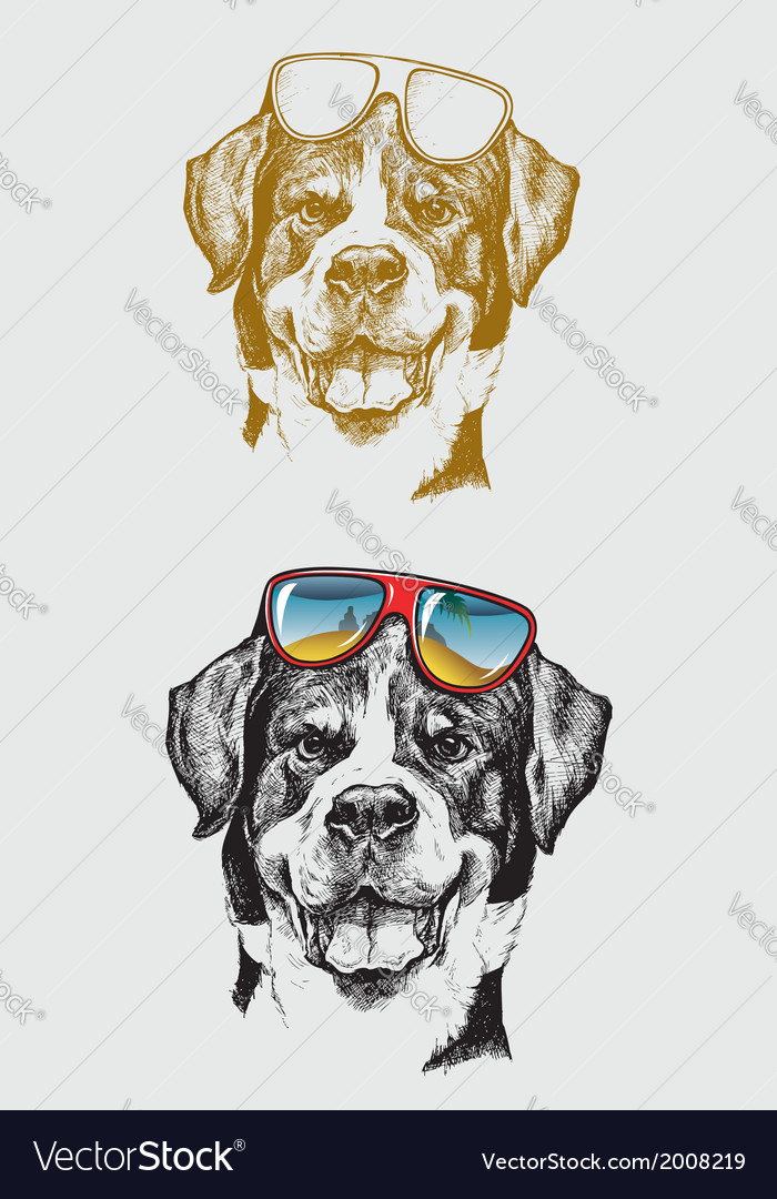 The Cool Dog Hand Drawing