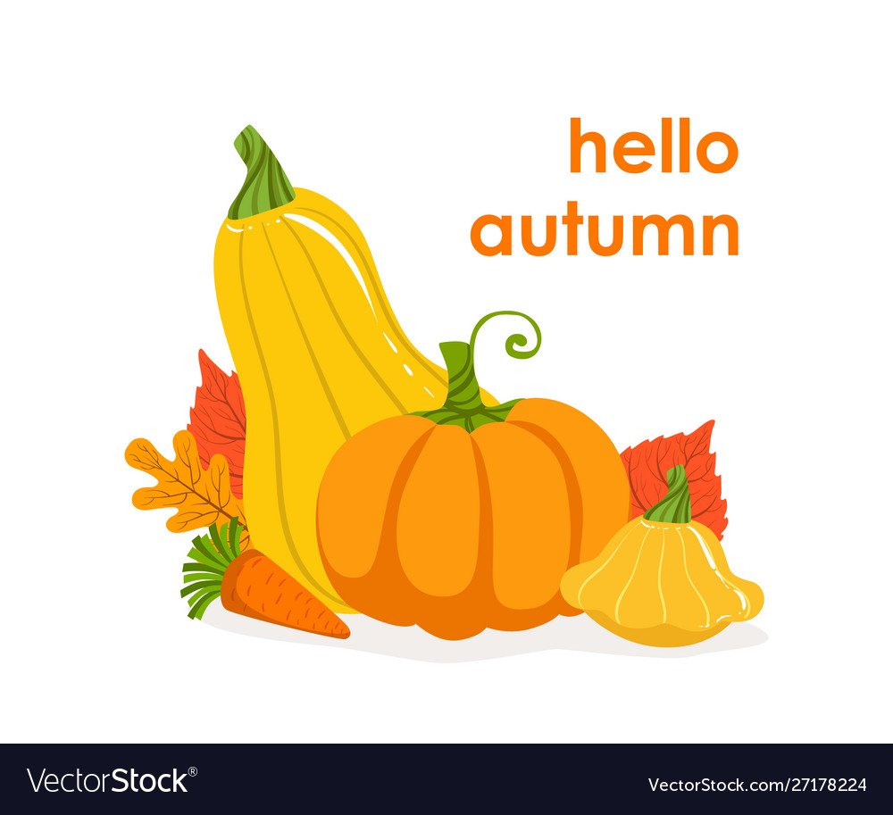 Hello autumn banner template seasonal poster with