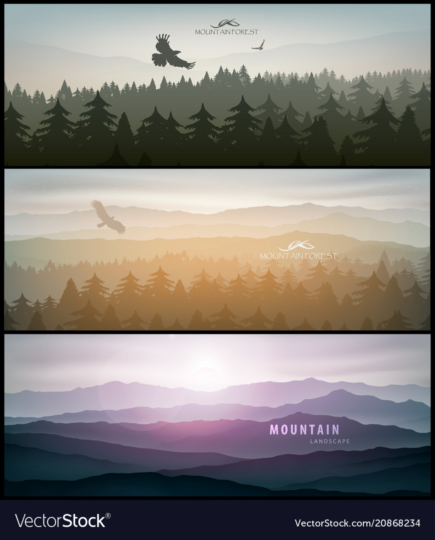 Forest and mountains banner for facebook