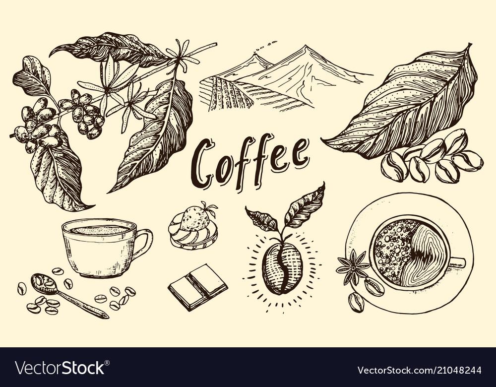 Traditional filter coffee maker modern vintage