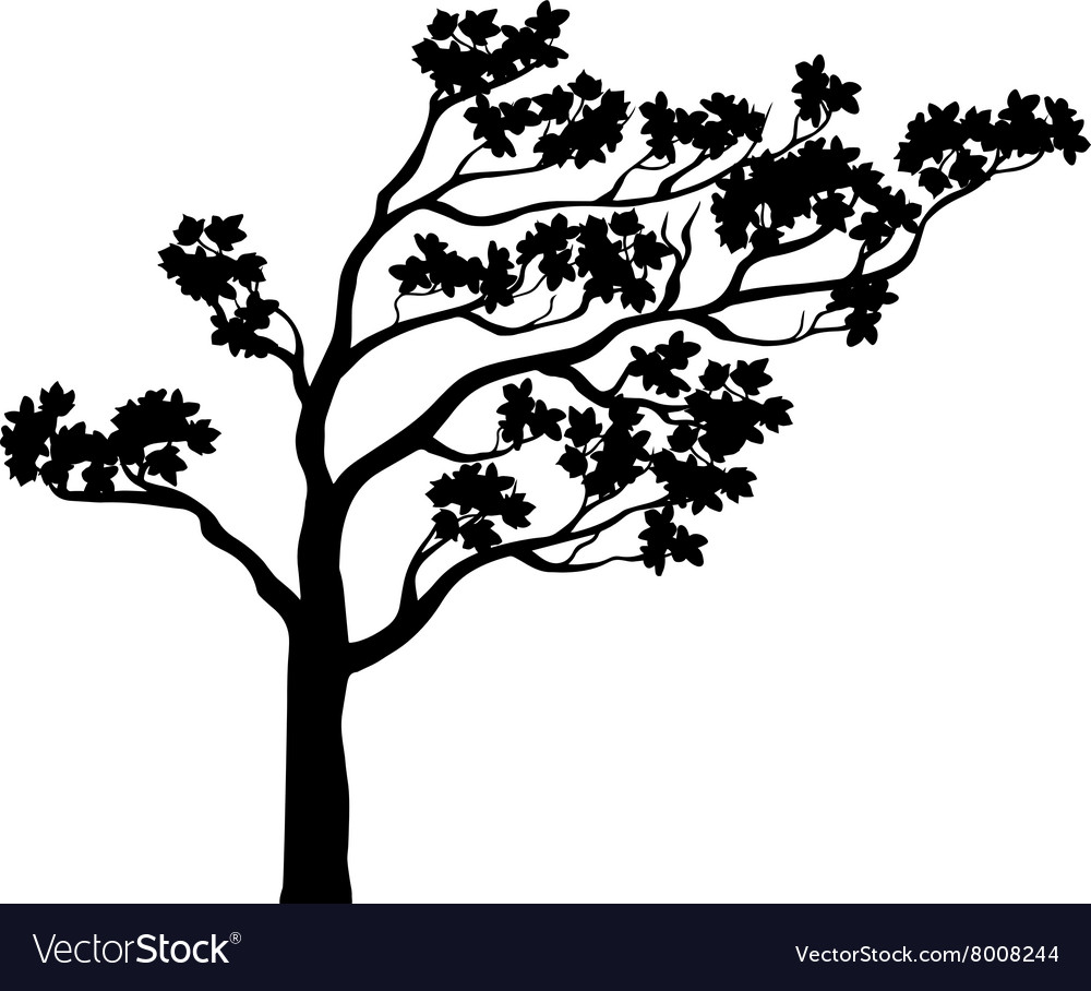Tree Sakura Silhouette Royalty Free Vector Image