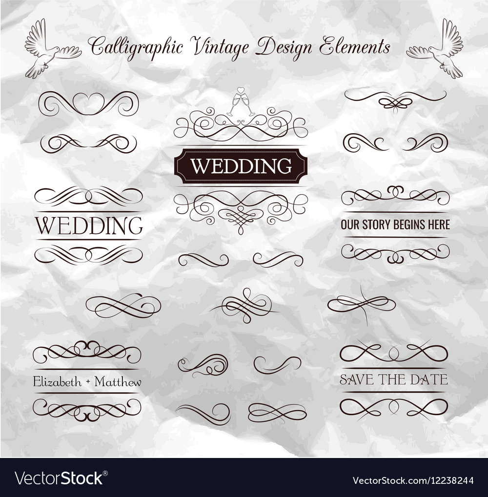 Wedding ornaments decorative elements vintage vector image junglespirit Images