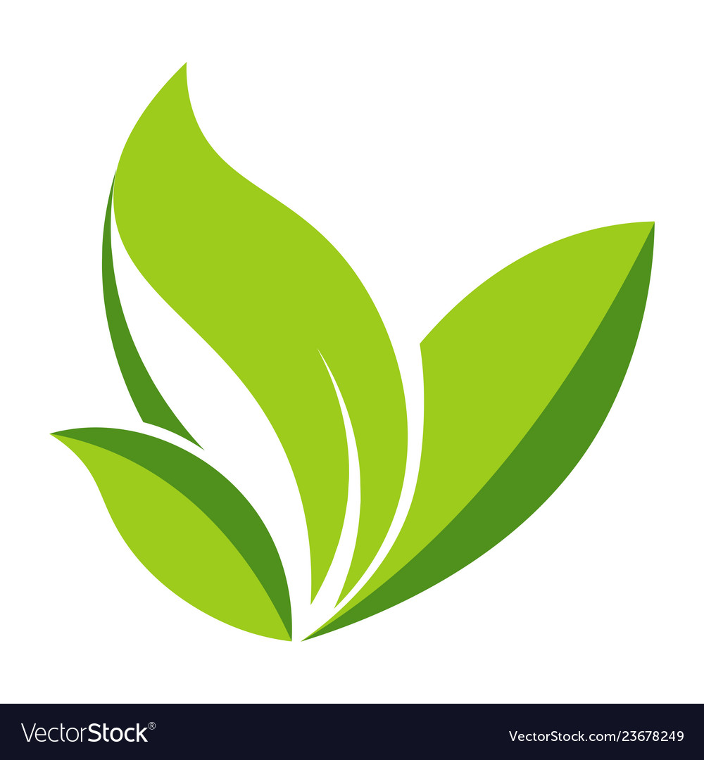 Green leaf logo template icon of leaf for