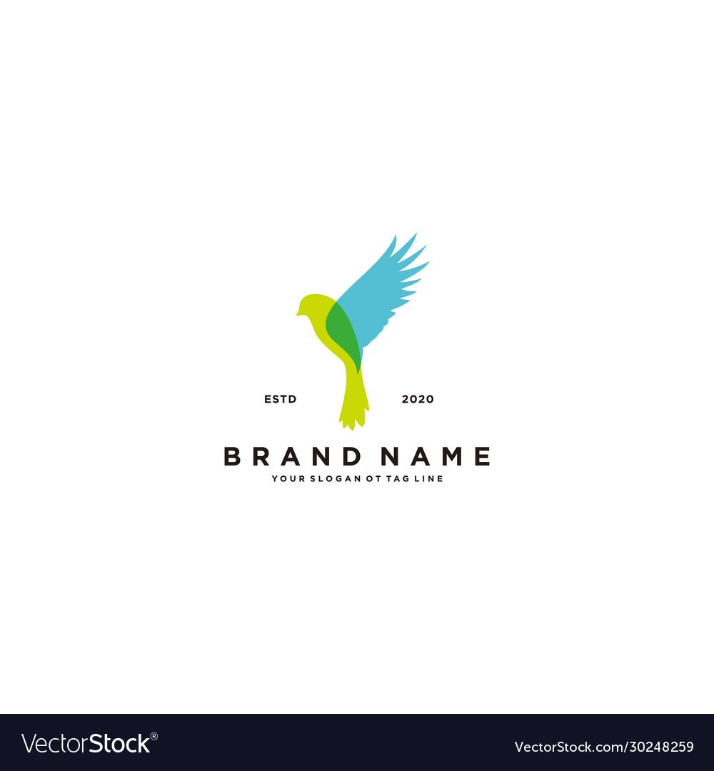 Bird colorful logo design