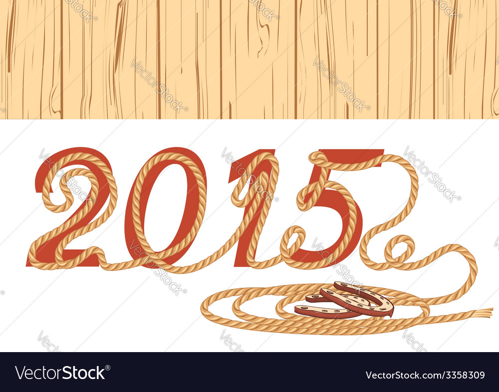 Cowboy lasso 2015 year