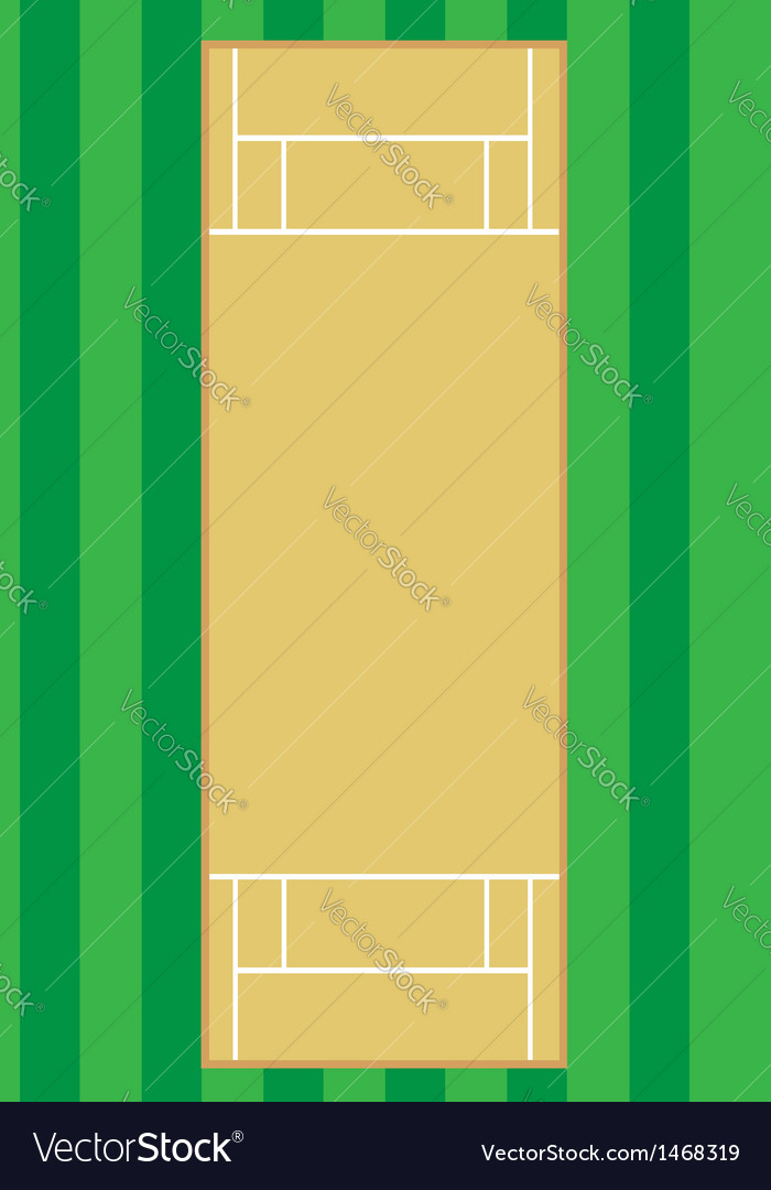 Cricket pitch vector image