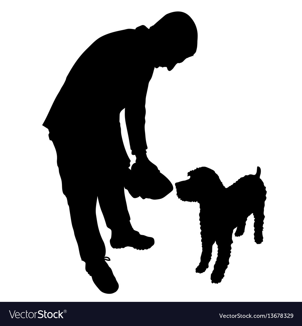 Man feeding dog vector image