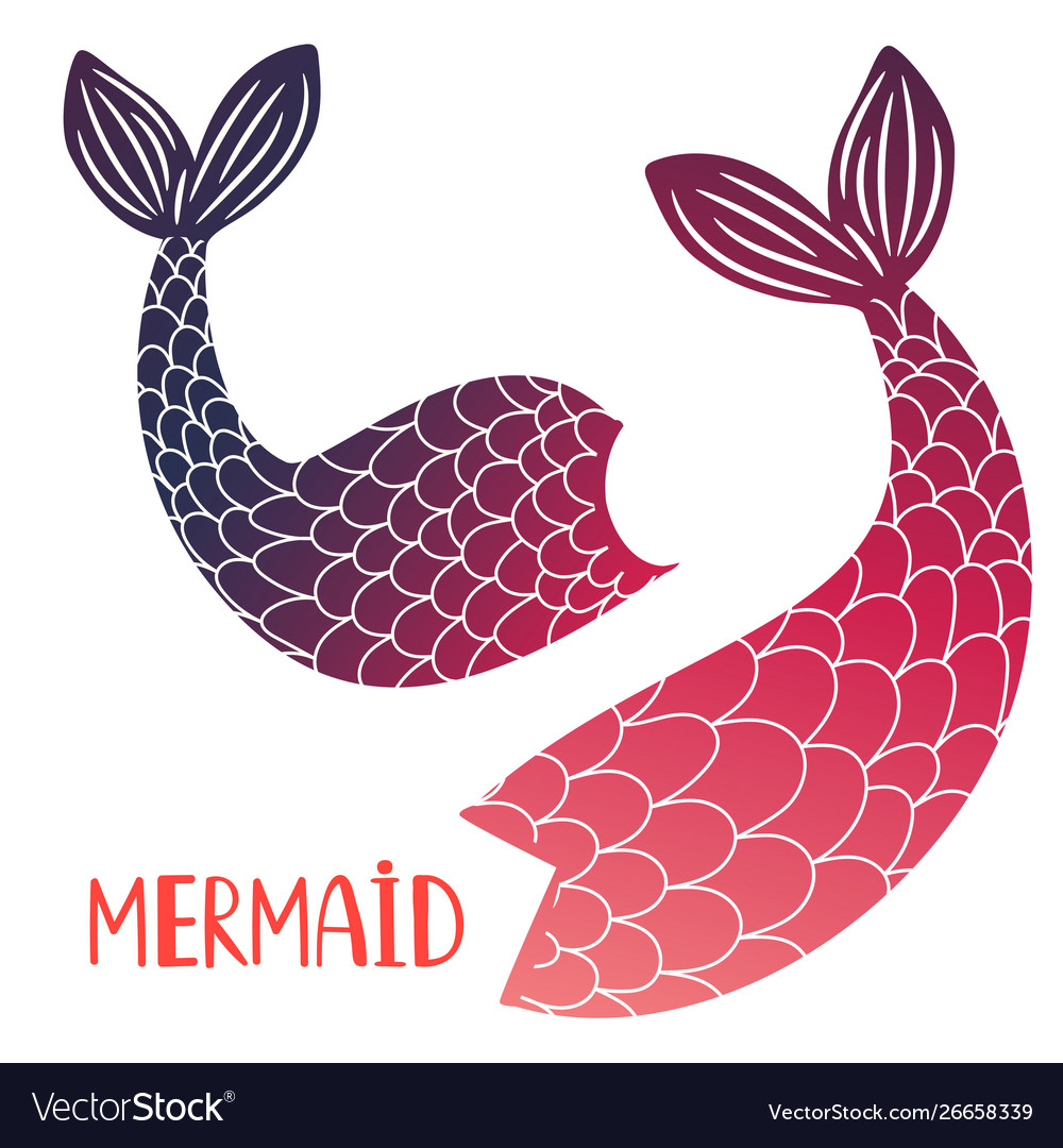 Mermaid tails isolated on white background