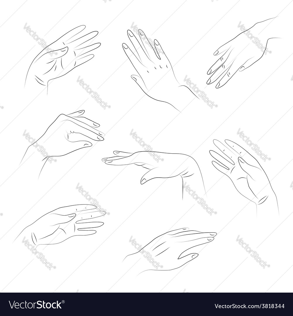 Hands1 vector image