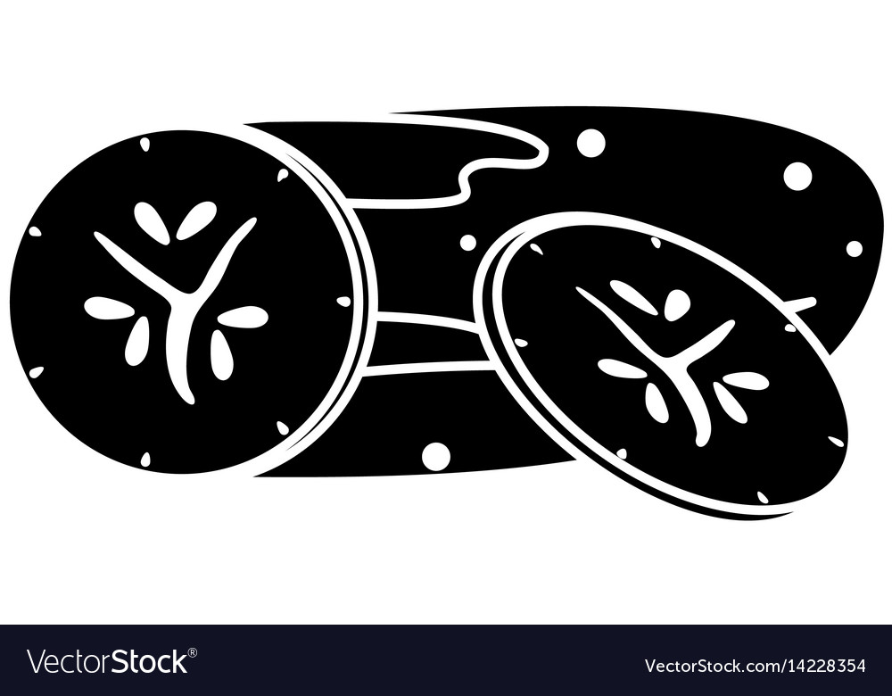 Cucumber slice vegetable food fresh pictogram
