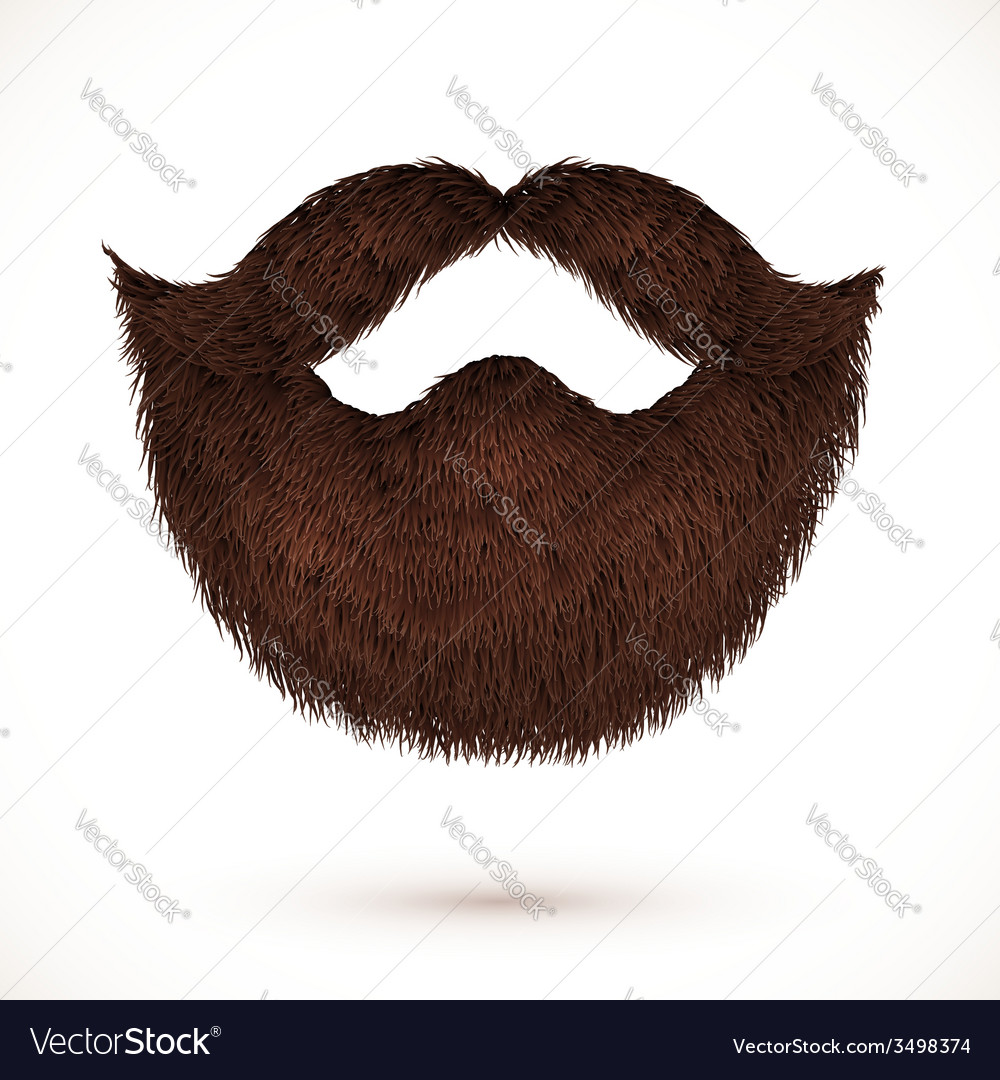 Brown mustaches and beard isolated on white