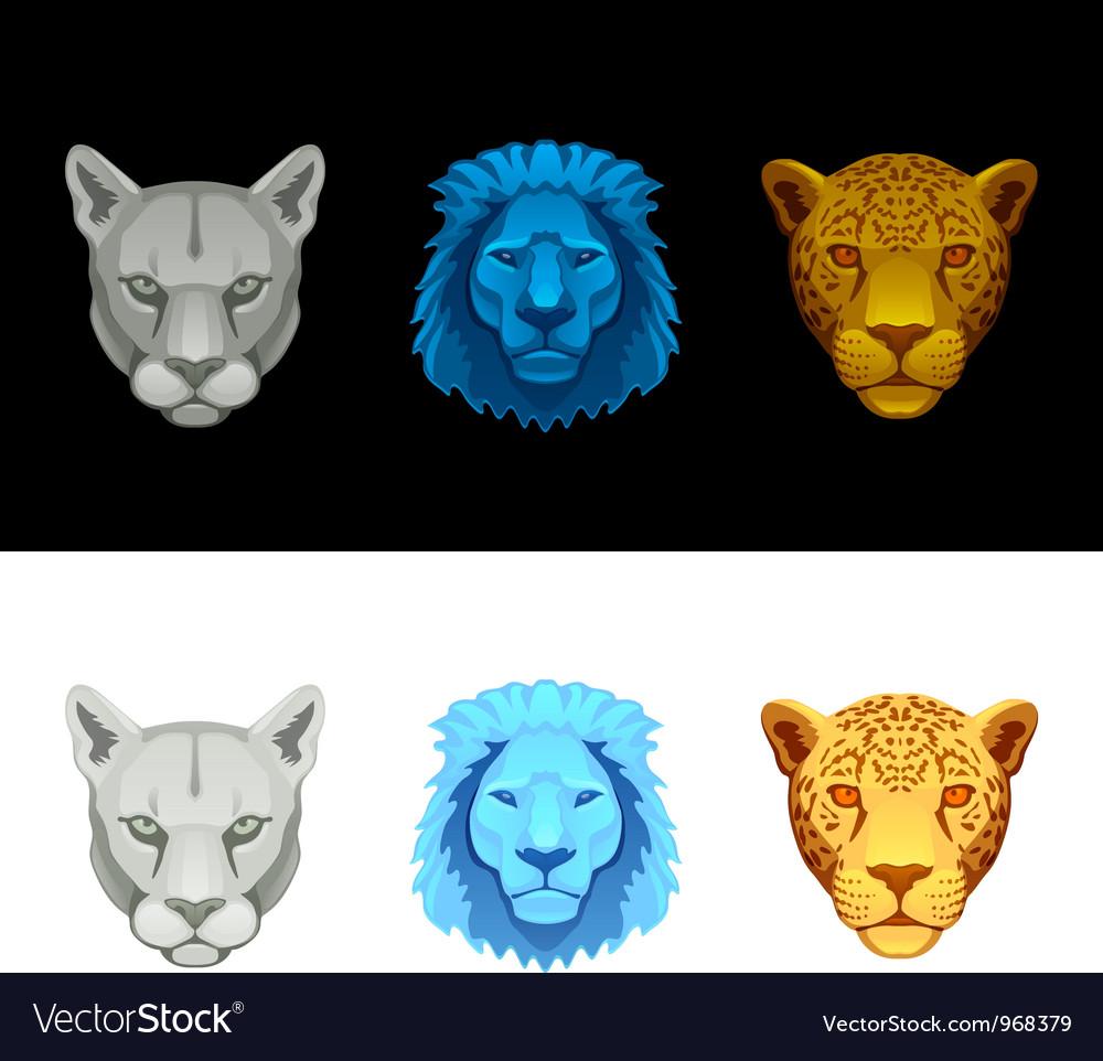 Big cat set-lion puma jaguar