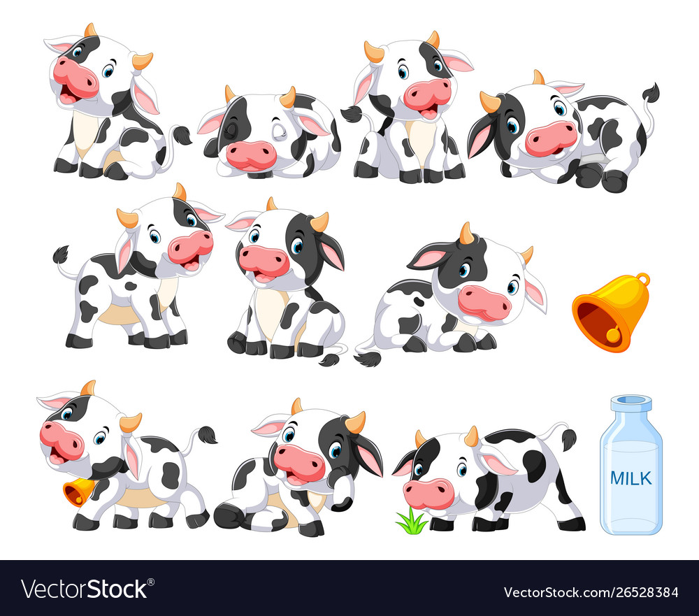 Collection cute cow with various posing