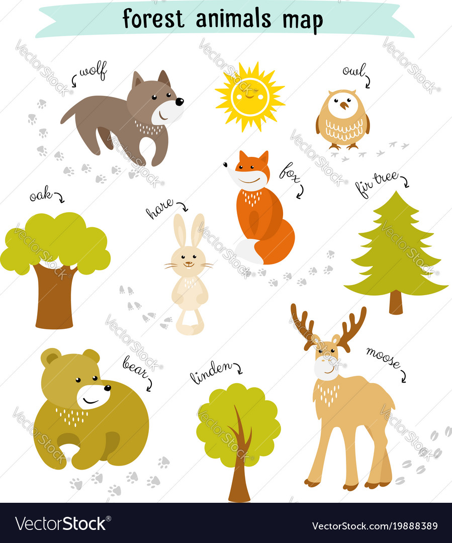 Forest animals map with trees and footprints