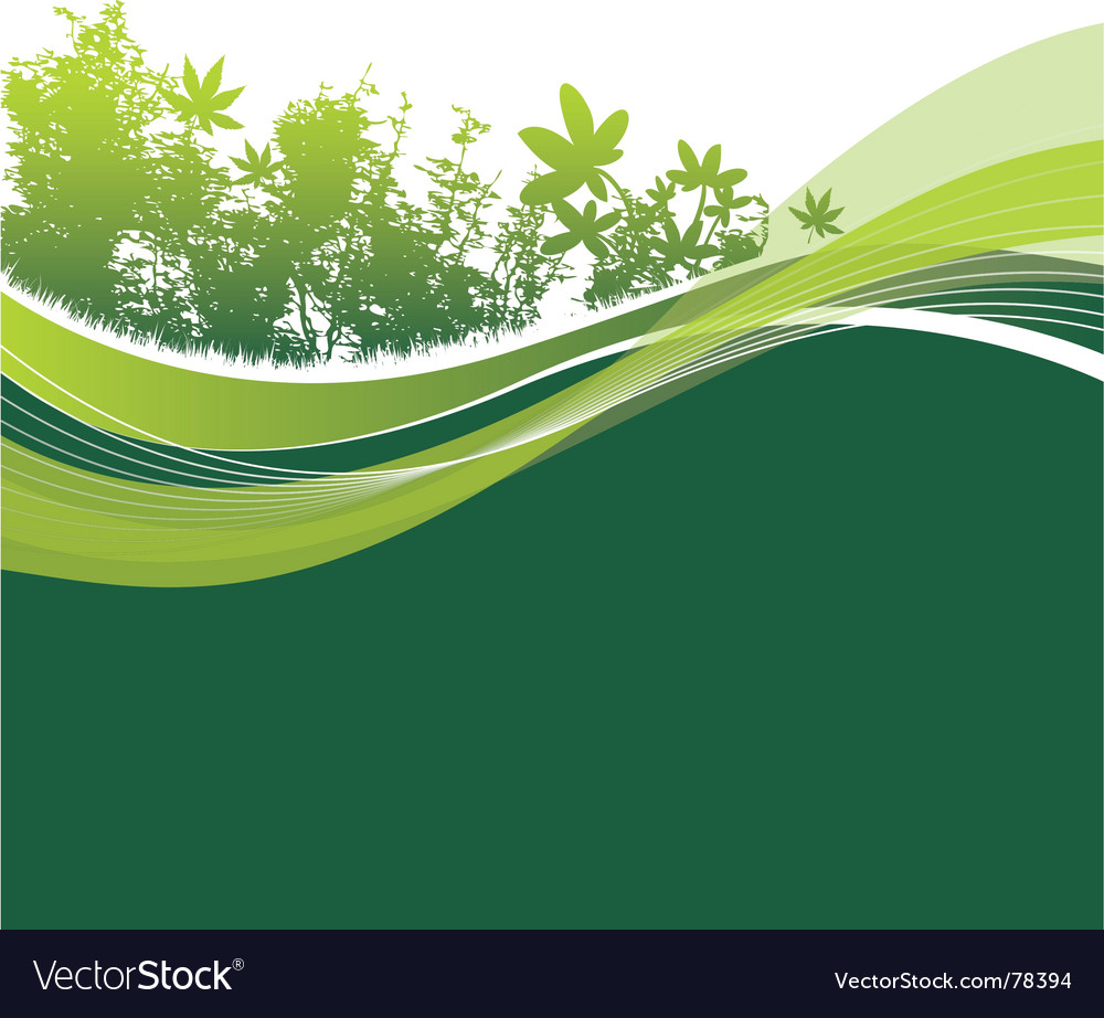 Trees and leaves background vector image