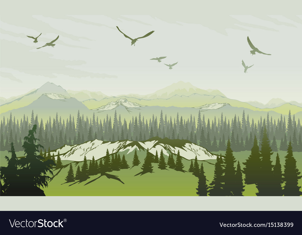 Landscape with forest and mountains sunrise sky