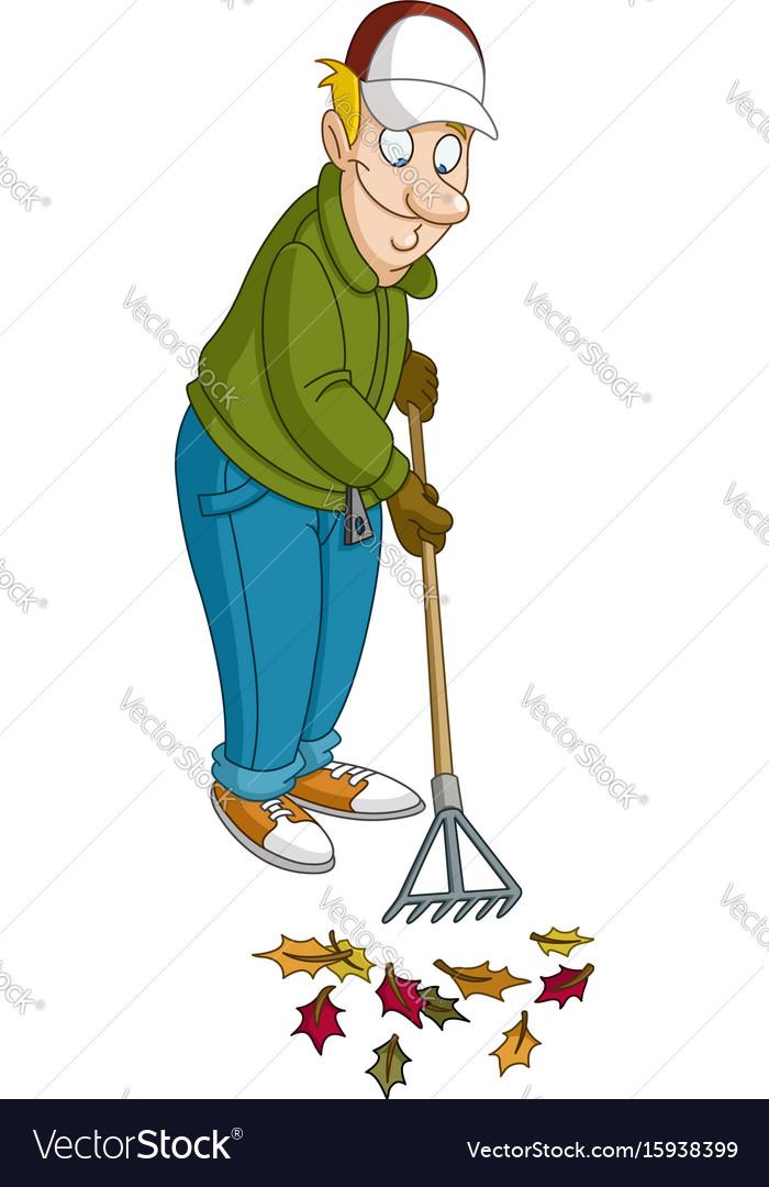 Man raking leaves vector image