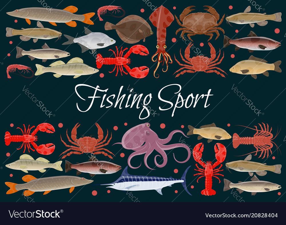 Fishing sport seafood poster of fresh fish vector image