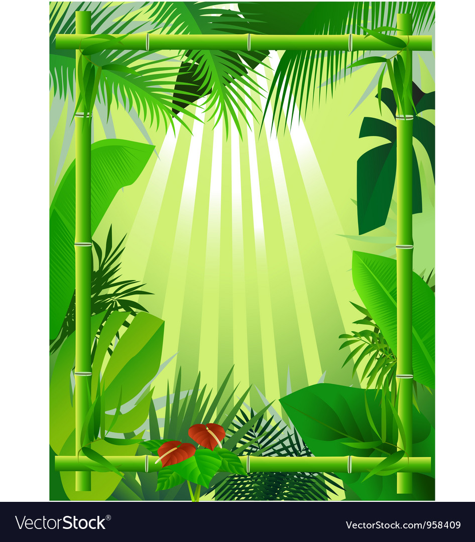 Beautiful forest background with bamboo frame vector art ...