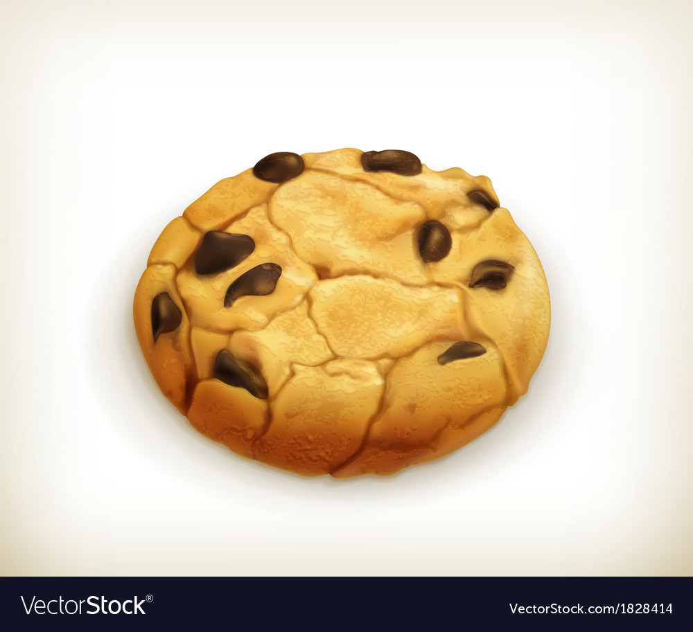Chocolate cookie icon vector image