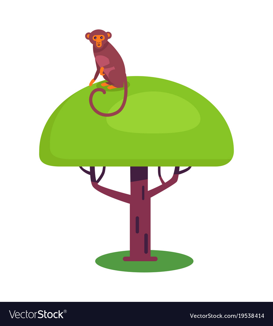 Funny monkey with long tail sits on big leafy tree