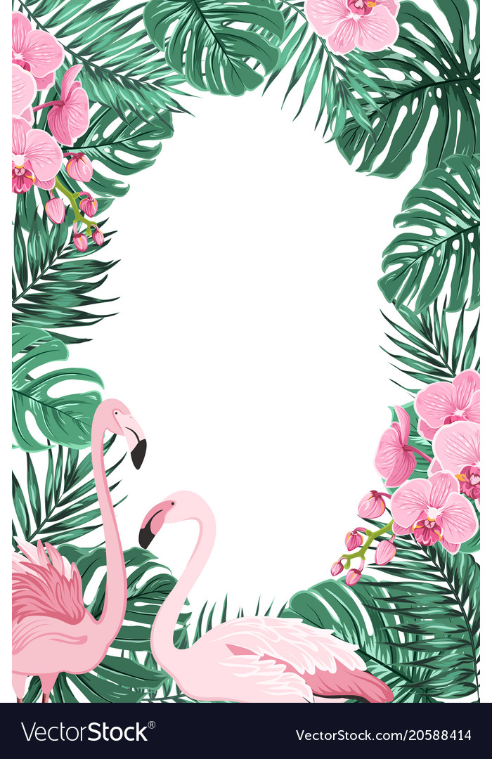 Jungle leaves orchid flowers flamingo birds frame