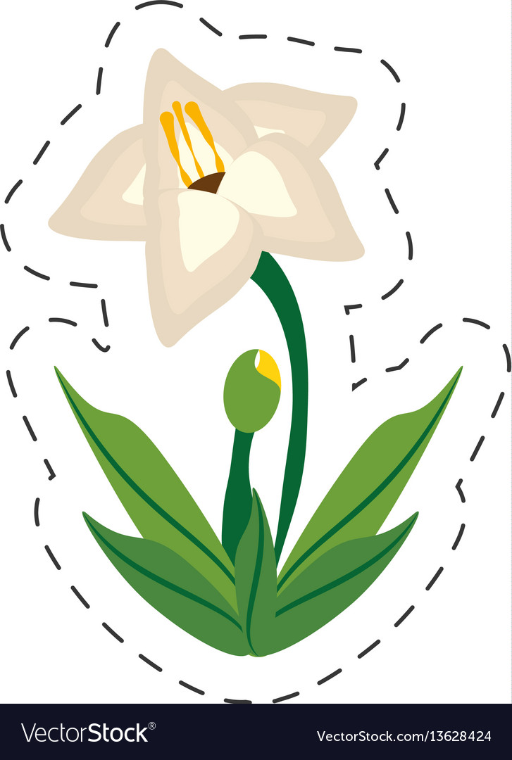 Cartoon gladiolus flower image