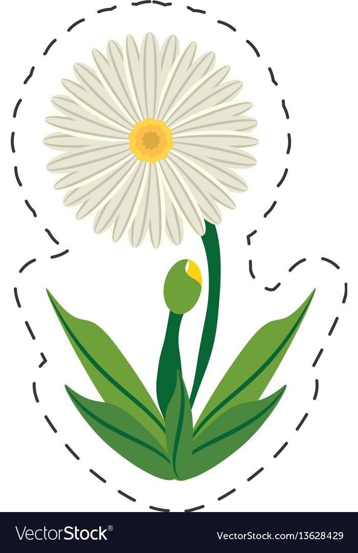 Flower Daisy Cartoon - Flowers Healthy