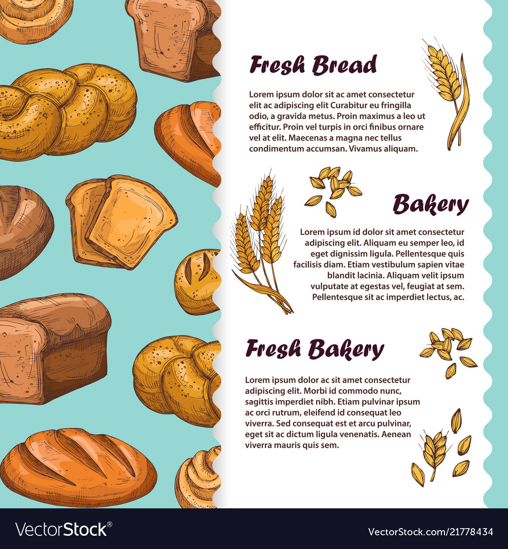 bakery cafe menu flyer template with royalty free vector