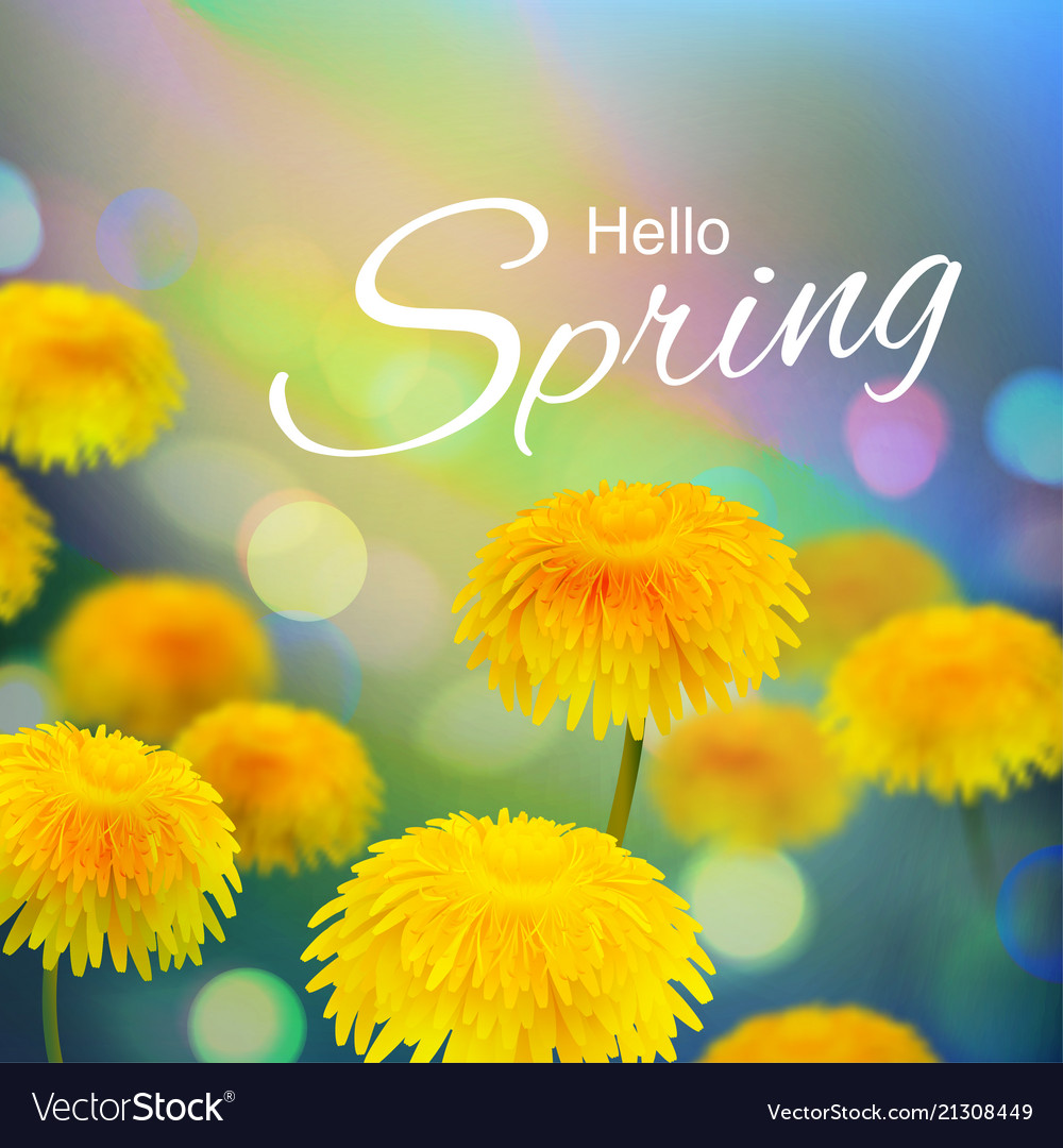 Stock hello hi spring
