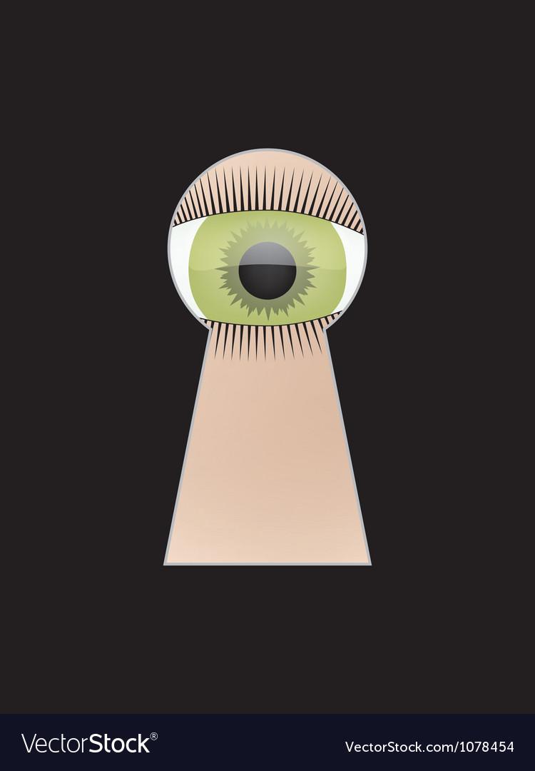 Eye peep at key hole vector image
