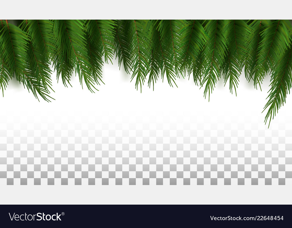 Green Christmas Tree Background Template Ready