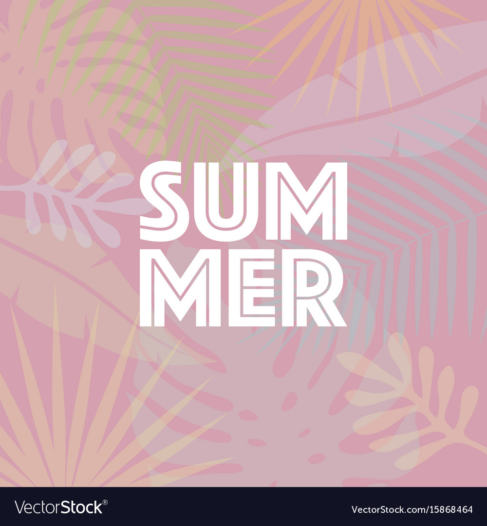 Trendy summer tropical leaves summer background vector image