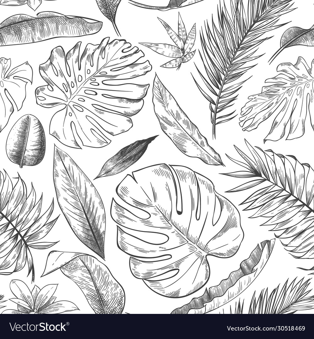 Hand Drawn Tropical Leaves Pattern Sketch Drawing Vector Image The best selection of royalty free tropical leaves vector art, graphics and stock illustrations. vectorstock