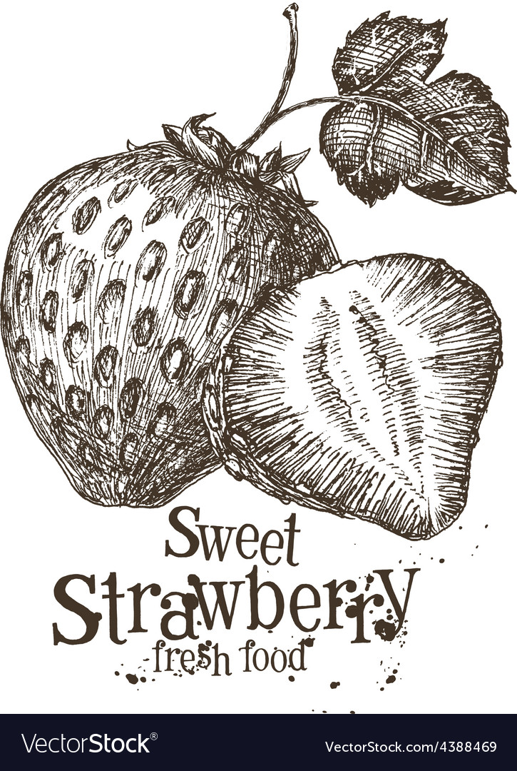 Strawberry logo design template fresh Royalty Free Vector