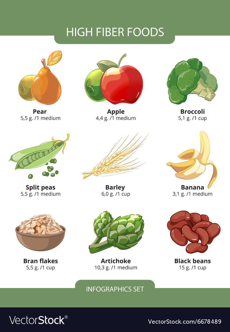 High fiber foods infographics Royalty Free Vector Image