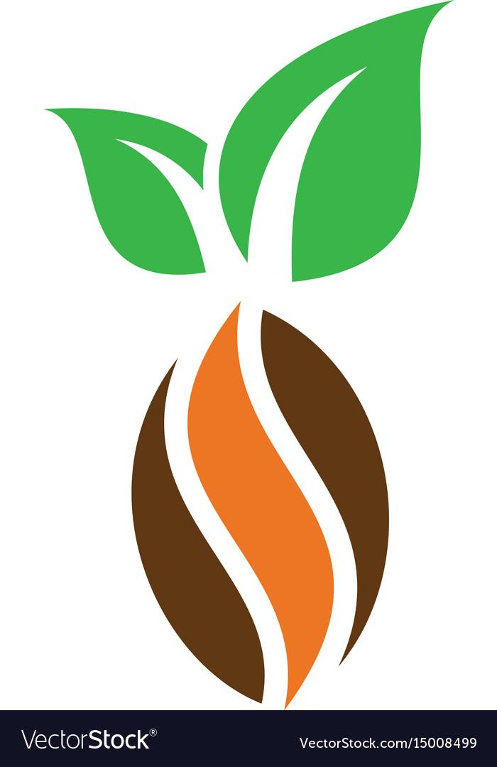 Kakao chocolate logo image