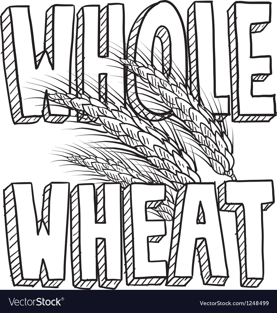 Whole wheat vector image
