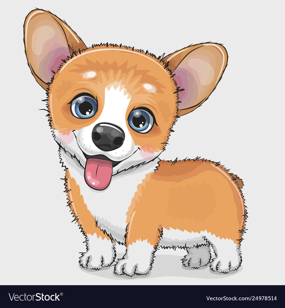 Cute cartoon dog corgi Royalty Free Vector Image