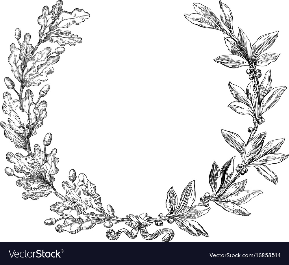 Laurel and oak wreath vector image