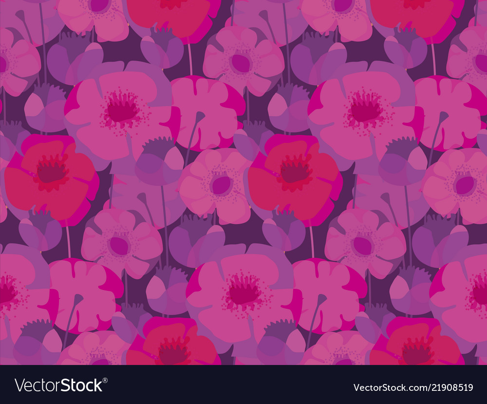 Pink and violet poppy flower meadow