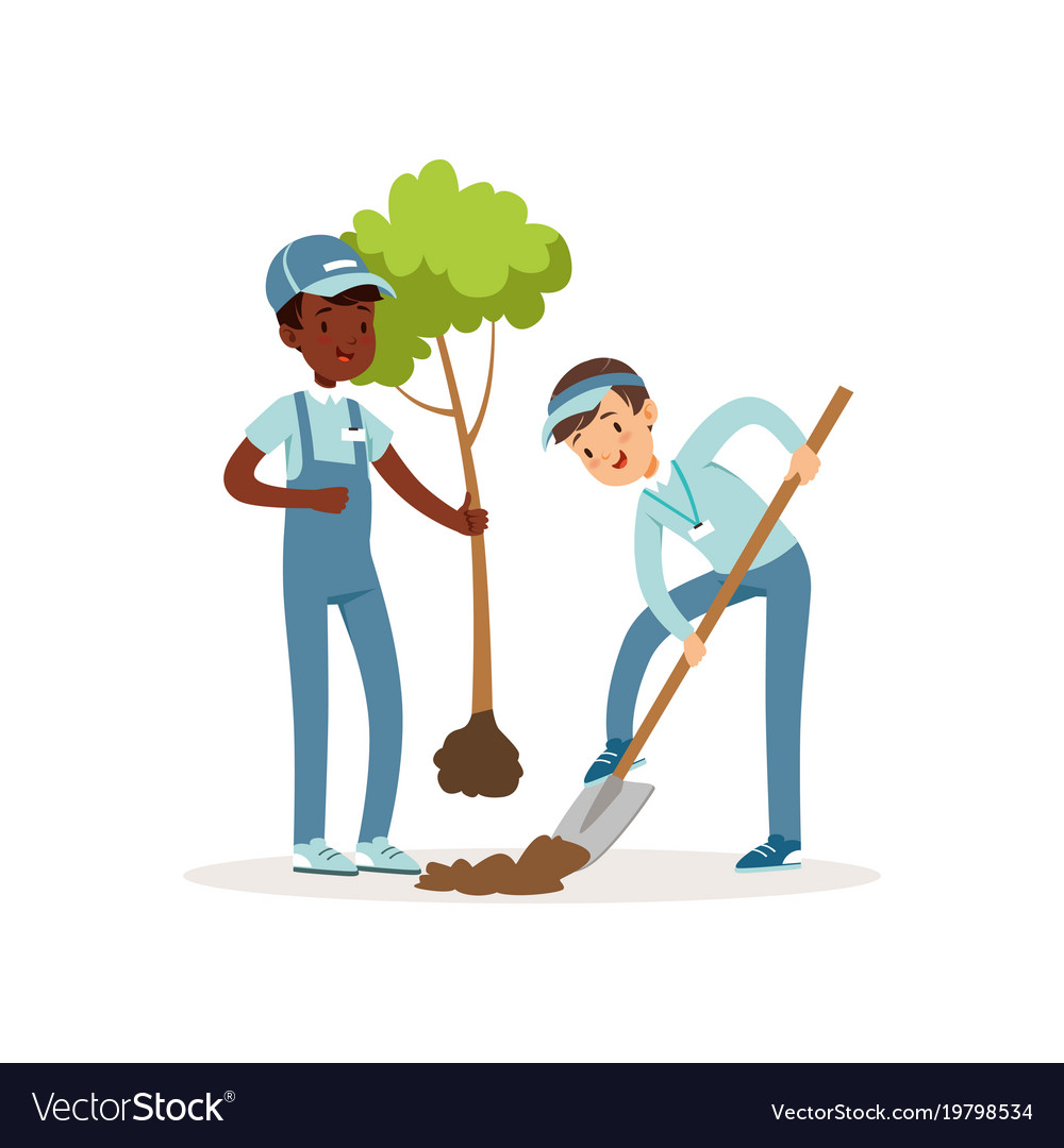 Kids planting tree boys in overalls and caps one vector image