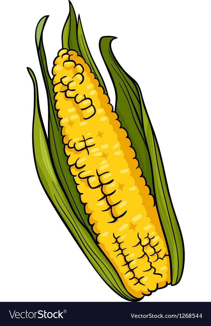 Corn on the cob cartoon vector image