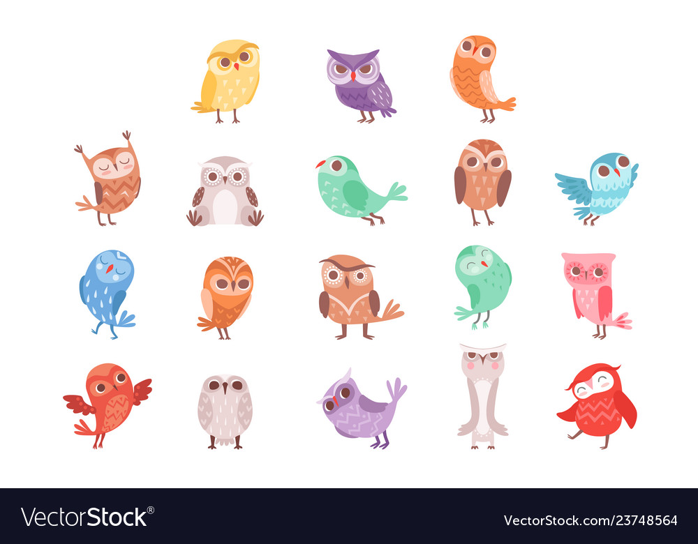 Cute cartoon colorful owls set lovely owlets