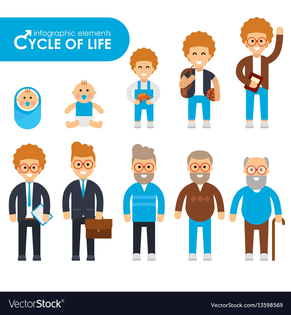 Set of cycle of life in a flat style