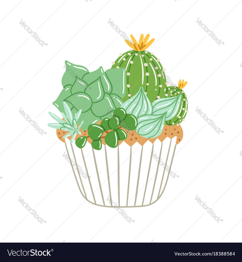 Cupcake with creamy succulents
