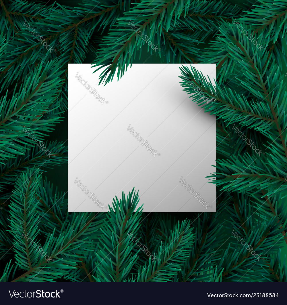 Green pine tree leaf card template with copyspace