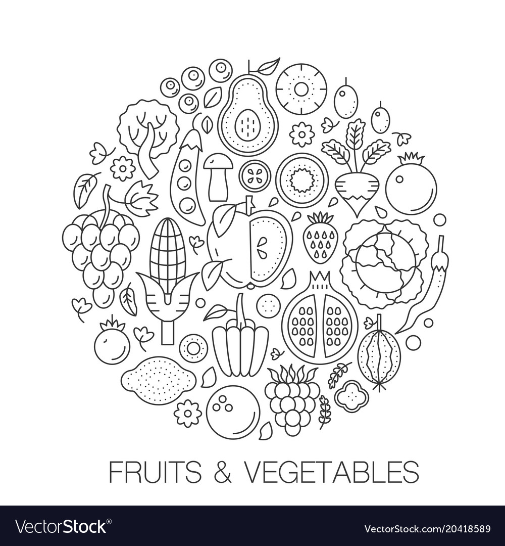 Fruits vegetables food in circle - concept line