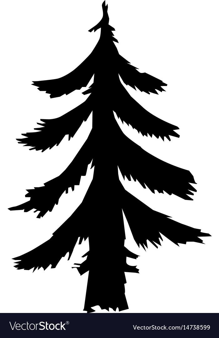 Fir forest motive