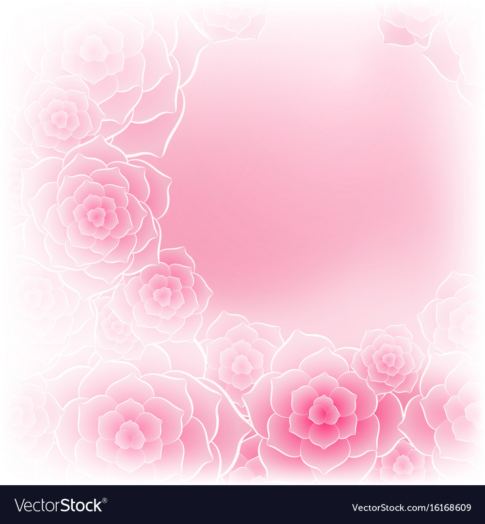 beautiful pink rose flower background royalty free vector